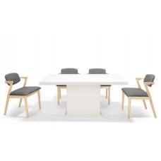 Designer Dining Set ( 1+4 )